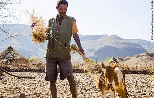 Ein Bauer in Äthiopien füttert sein Vieh.