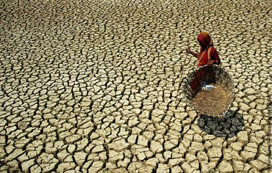Una donna attraversa un campo inaridito nell'est dell'India.